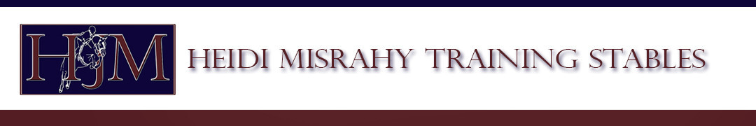 Heidi Misrahy Training Stables Logo